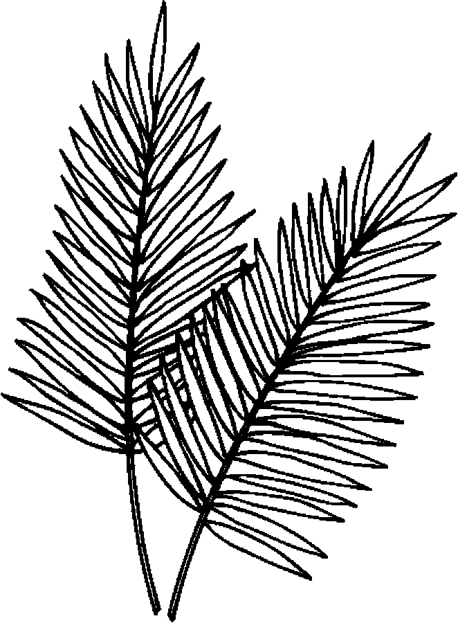 Branches For Coloring - ClipArt Best