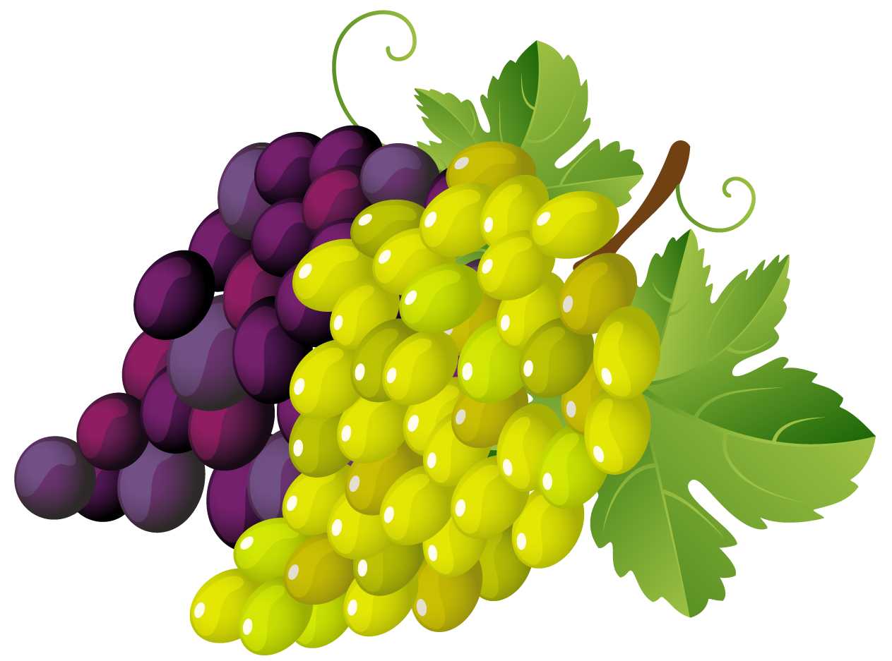Grapes And Wine Clipart | www.imgkid.com - The Image Kid ...