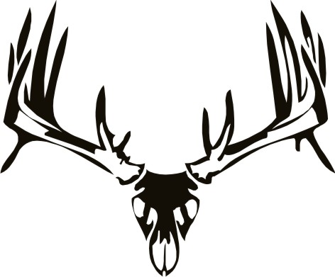 Deer Hunting Drawings Deer Skull Hunting Decal
