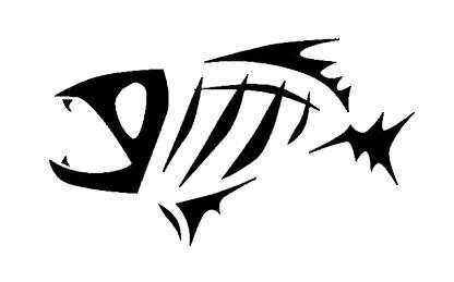Fish Skeleton Drawing Skeleton Fish   Drawing