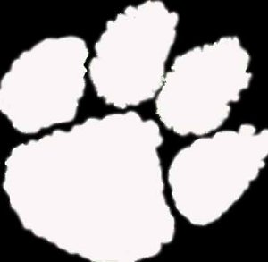 Picture Of Tiger Paw