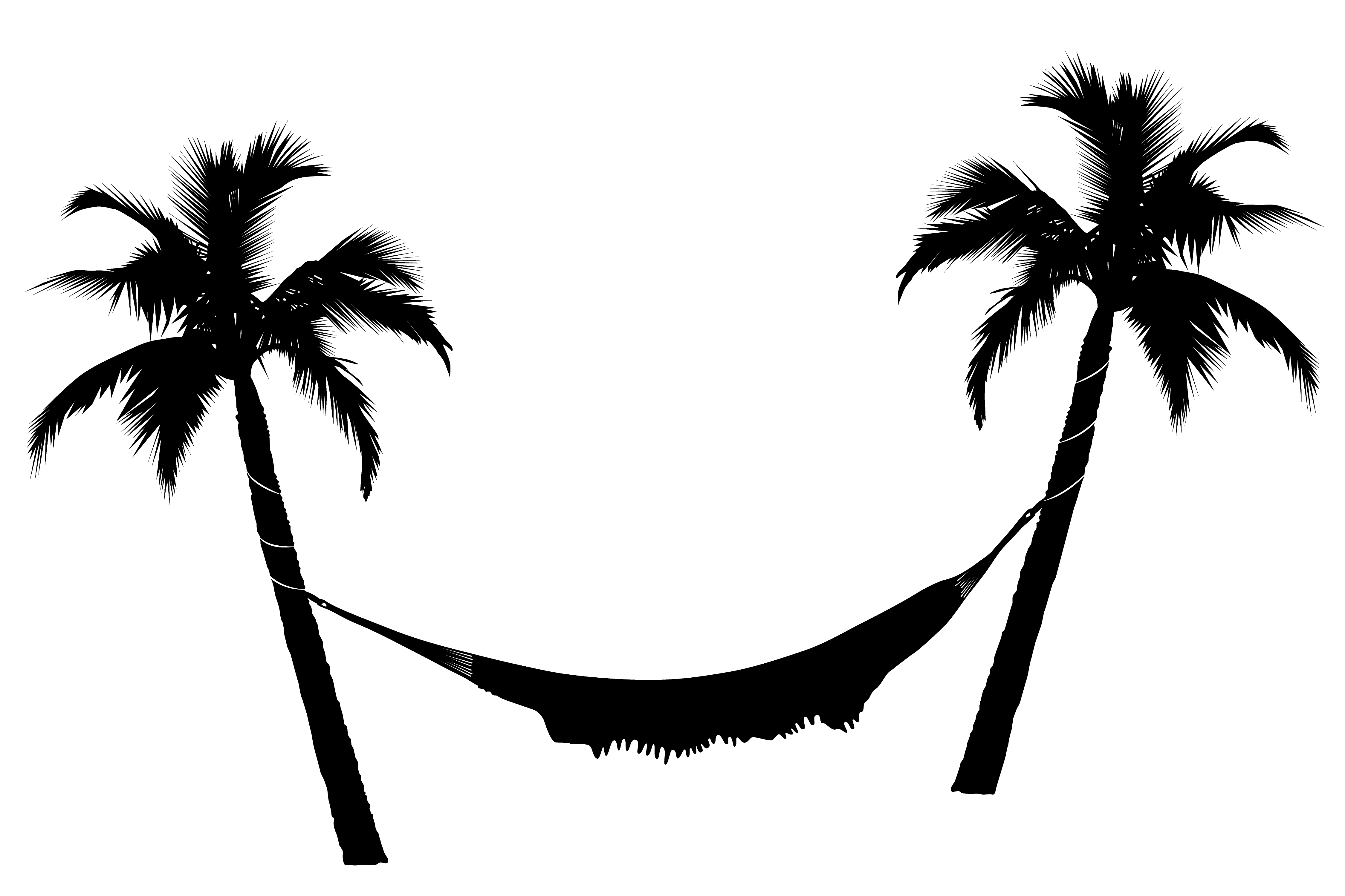 Vector Palm Tree Silhouette  ClipArt Best