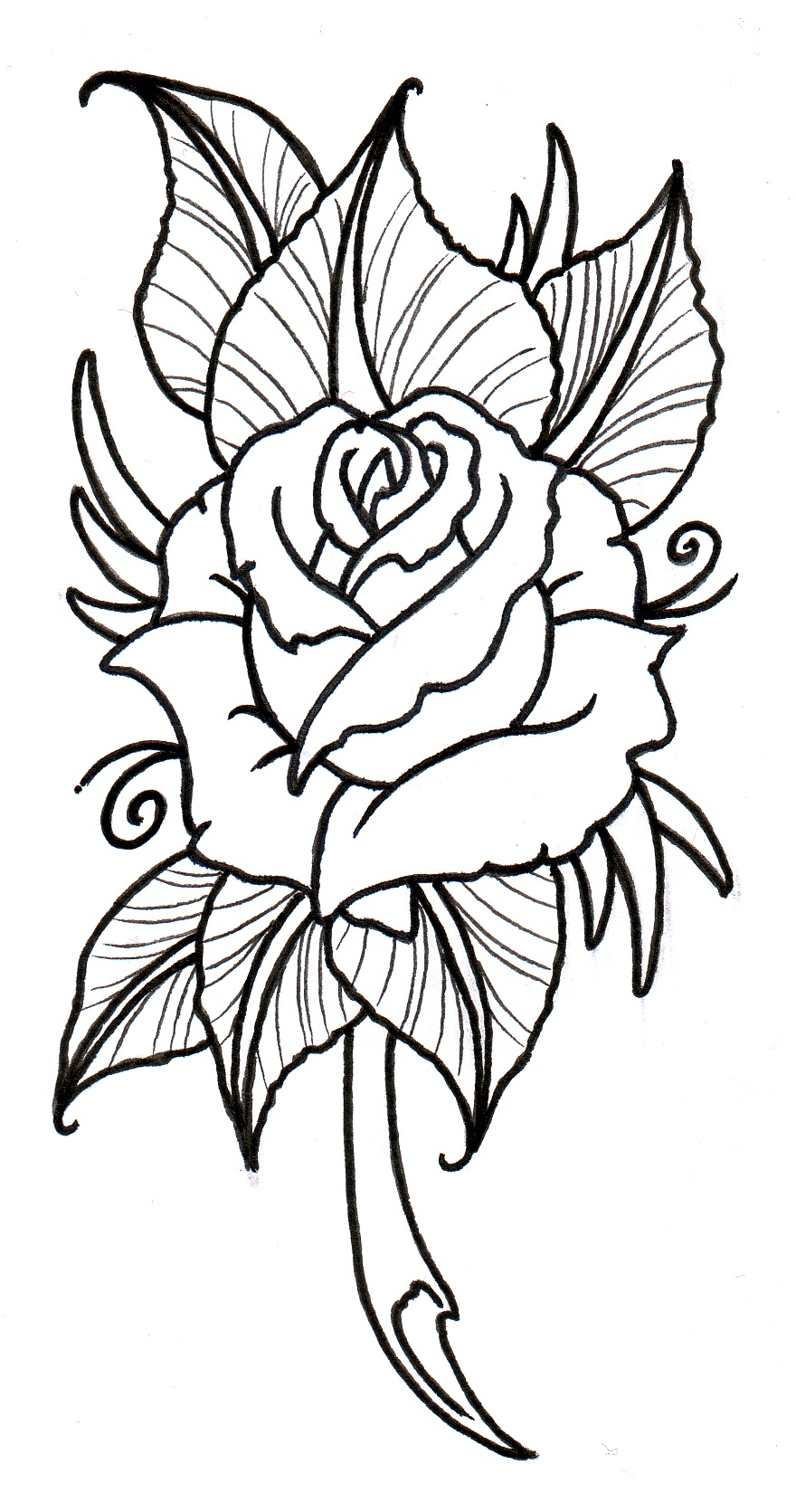 Traditional rose tattoo black and white