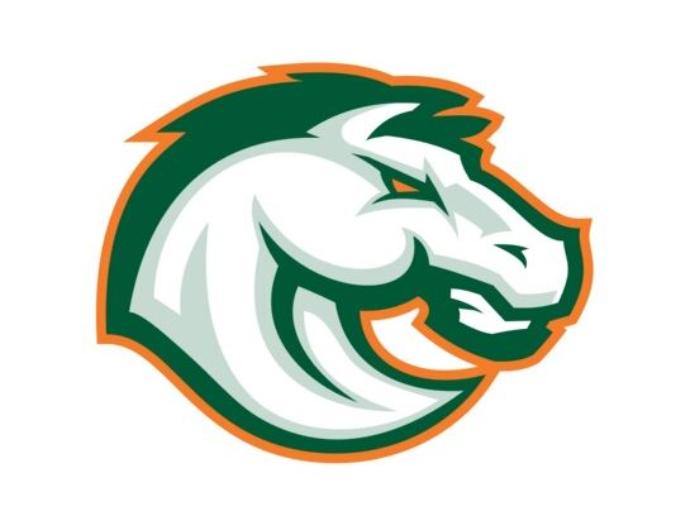 High school mascot logos designs