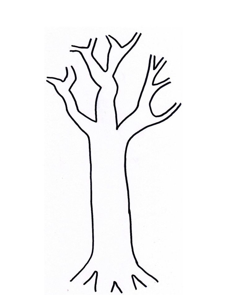 Tree Trunk Clipart - ClipArt Best
