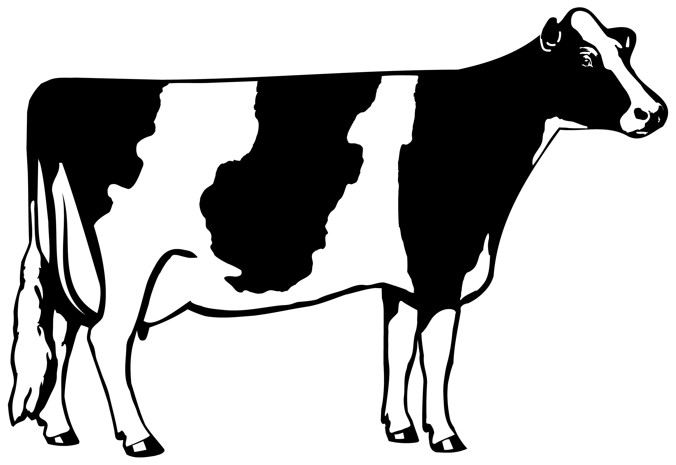 free clip art dairy cow - photo #2