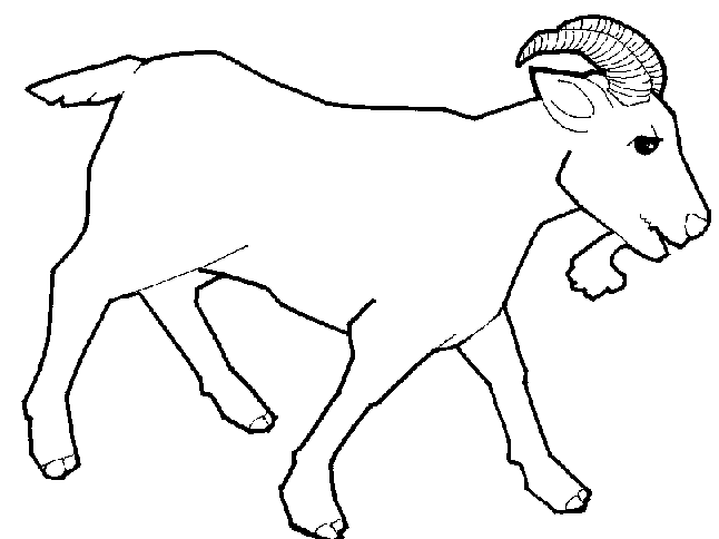Line Drawing Goat : Goat line drawing clipart best