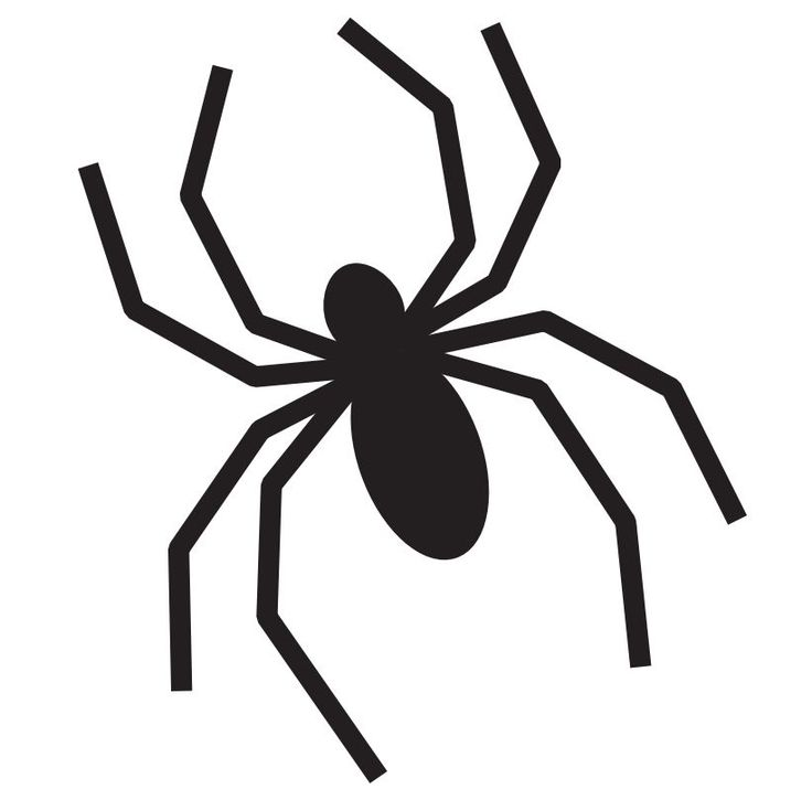 Modest image inside spider printable