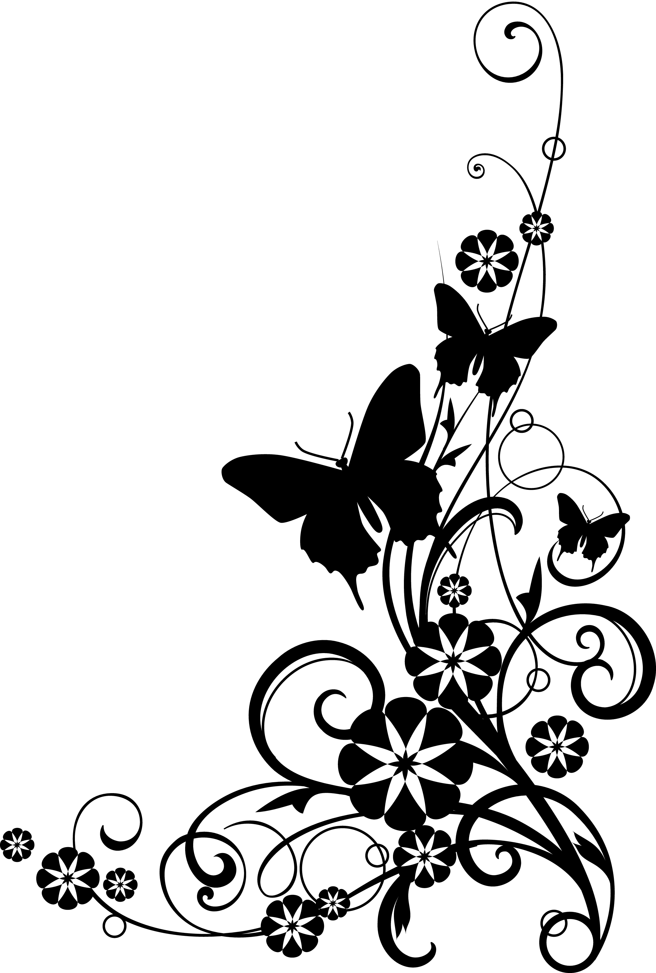 Line Art Design Png : Border line art design black and white clipart best