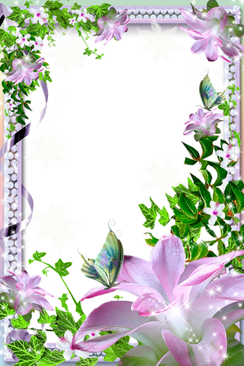 Beautiful Transparent Photo Frame With Flowers Clipart