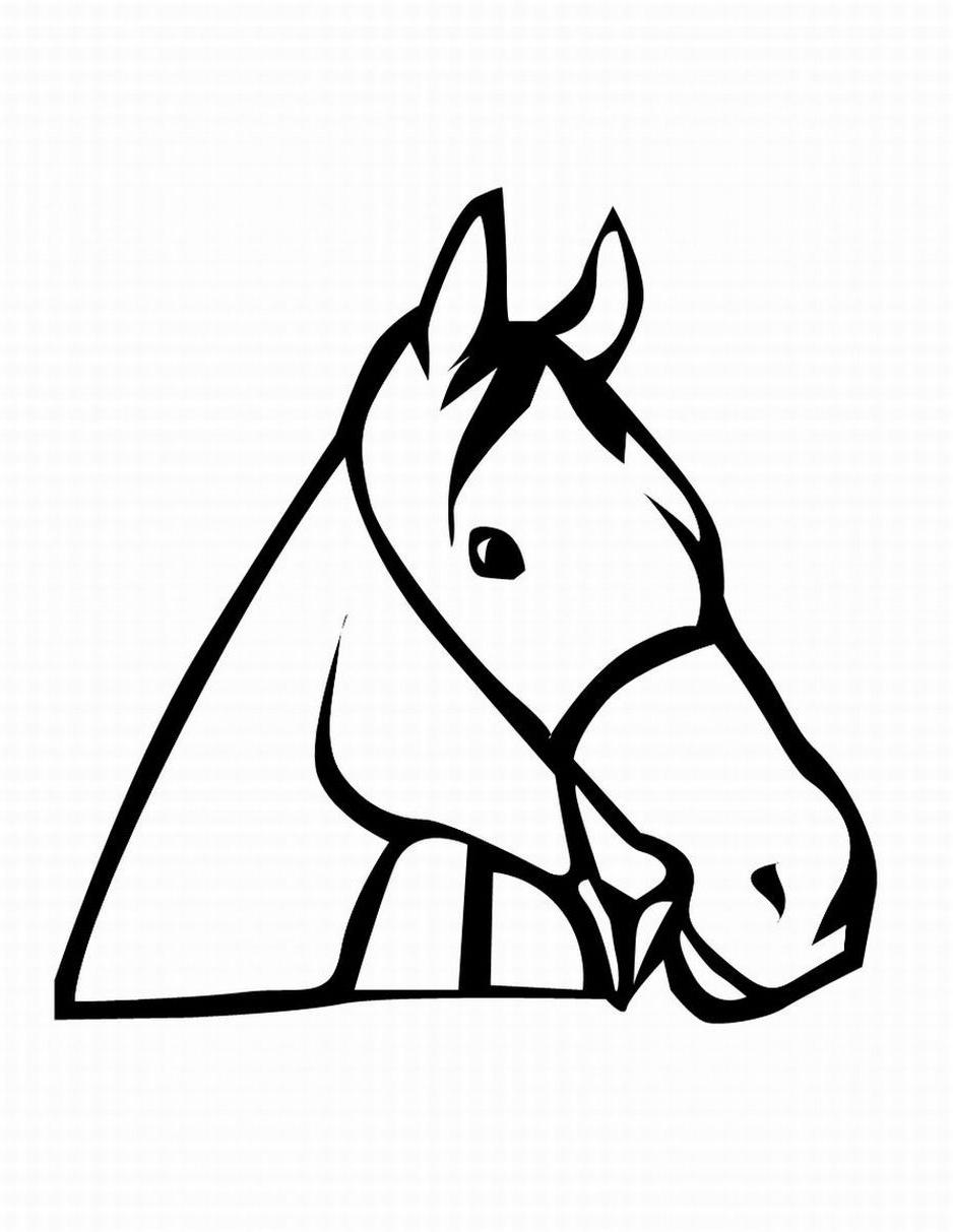 Horse head coloring