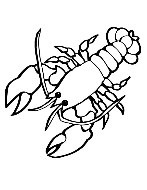 Cartoon Black And White Lobster