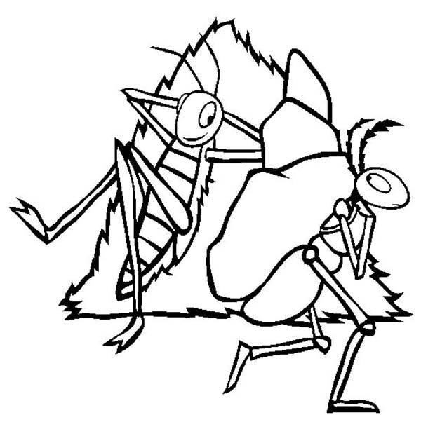 the ant and the grasshopper cartoon clipart best