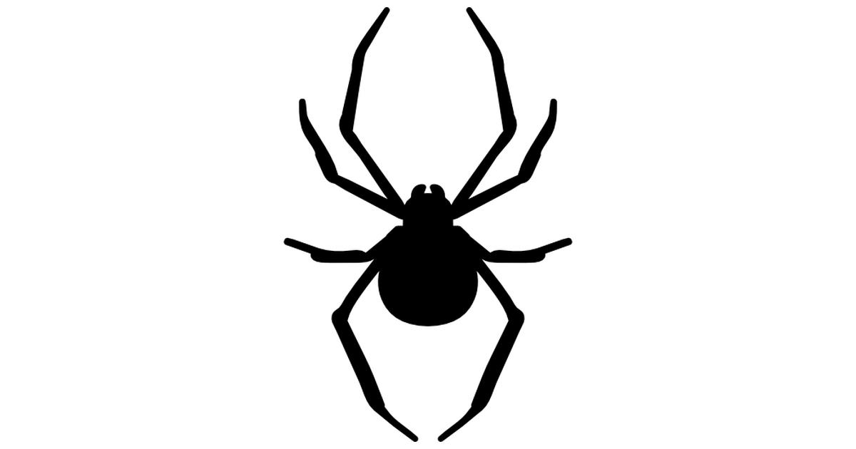 Spider clipart