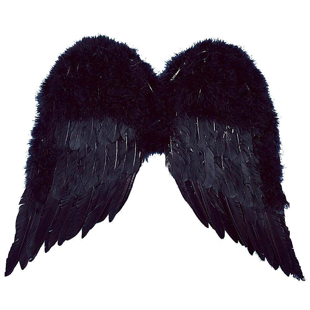 Wings Black Feather 22 Inch Angel - ClipArt Best - ClipArt ...