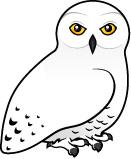 Cartoon Snowy Owl Clipart Best