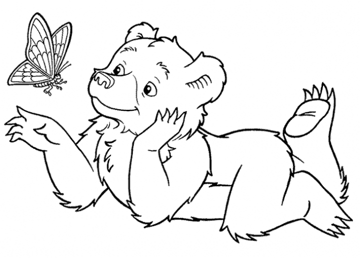 Teddy Bear coloring page | Free Printable Coloring Pages | 517x720