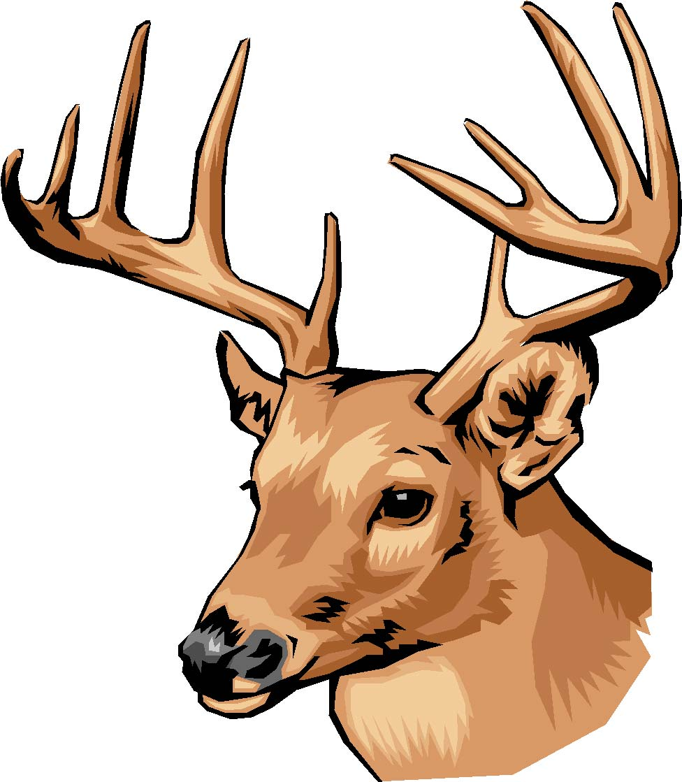 Best Deer Buck Head Clip Art Images » Free Vector Art ...