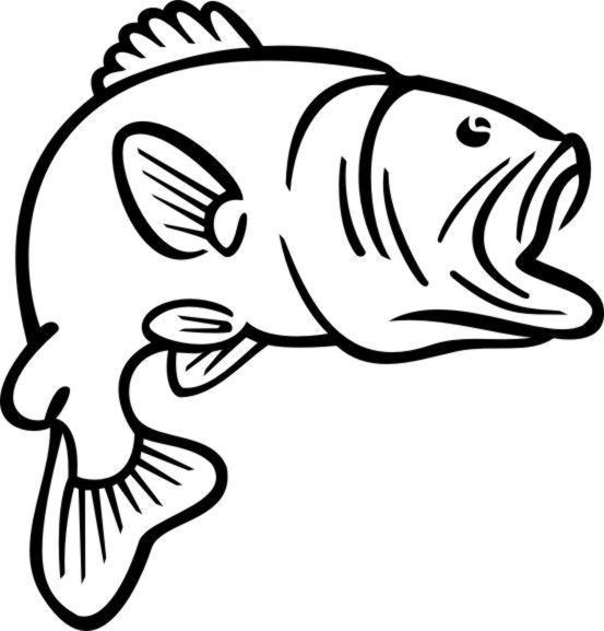 Bass drawing clipart best for Simple fish coloring page