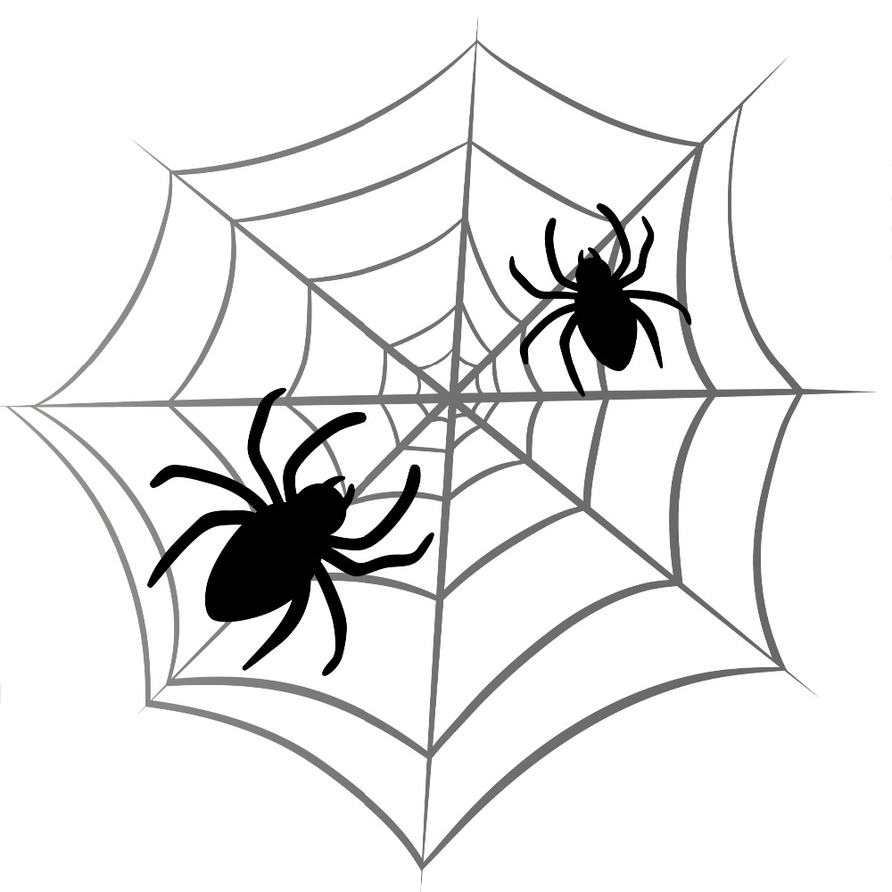 Spiderweb Cartoon - ClipArt Best