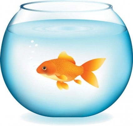 Gold Fish Bowl Clipart