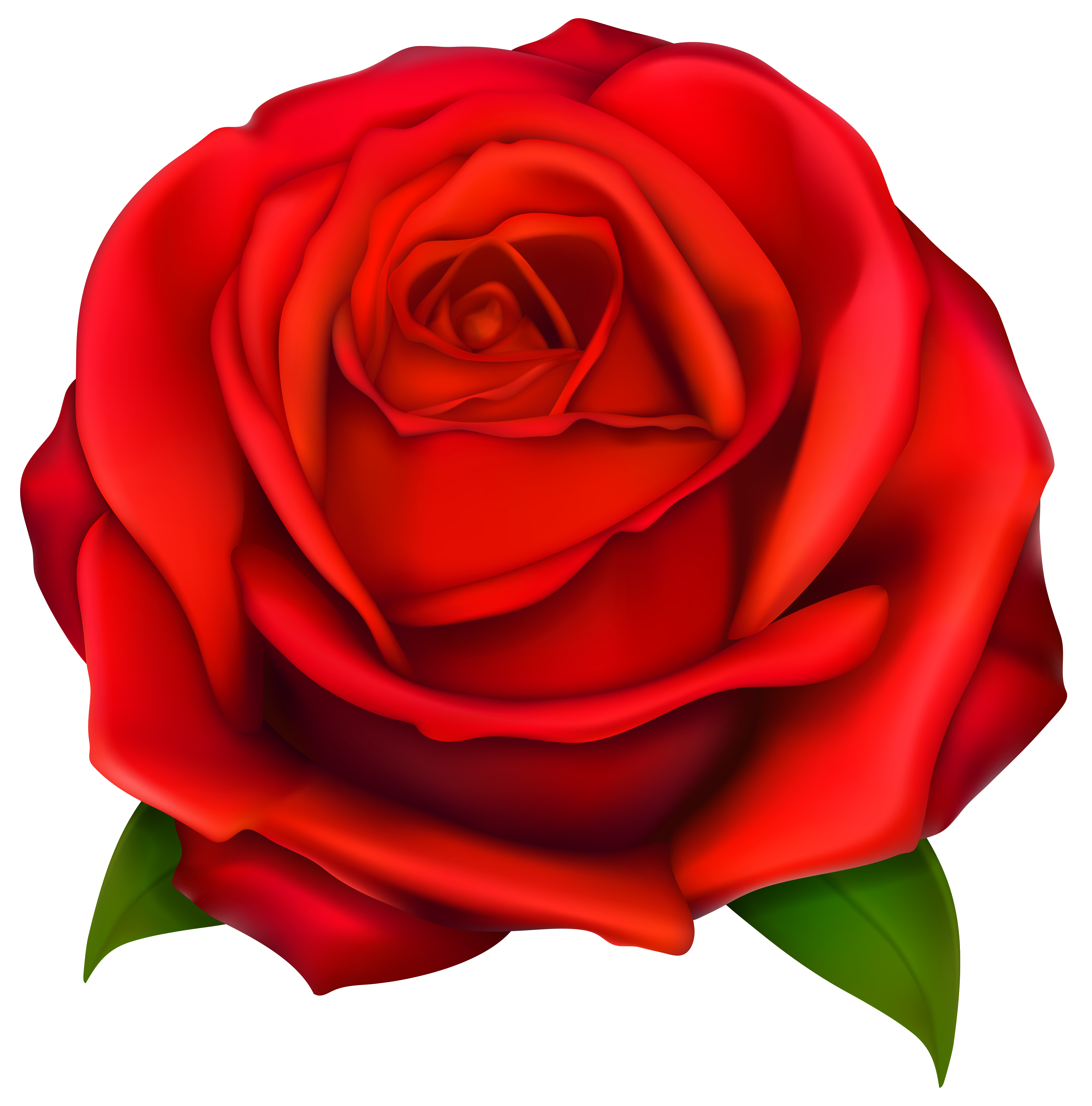 red rose cartoon clipart best clip art roses black and white clip art roses free