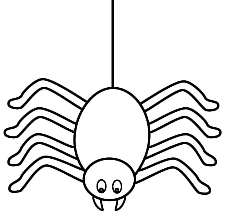 Cartoon spider template clipart best - Spider outline clip art ...