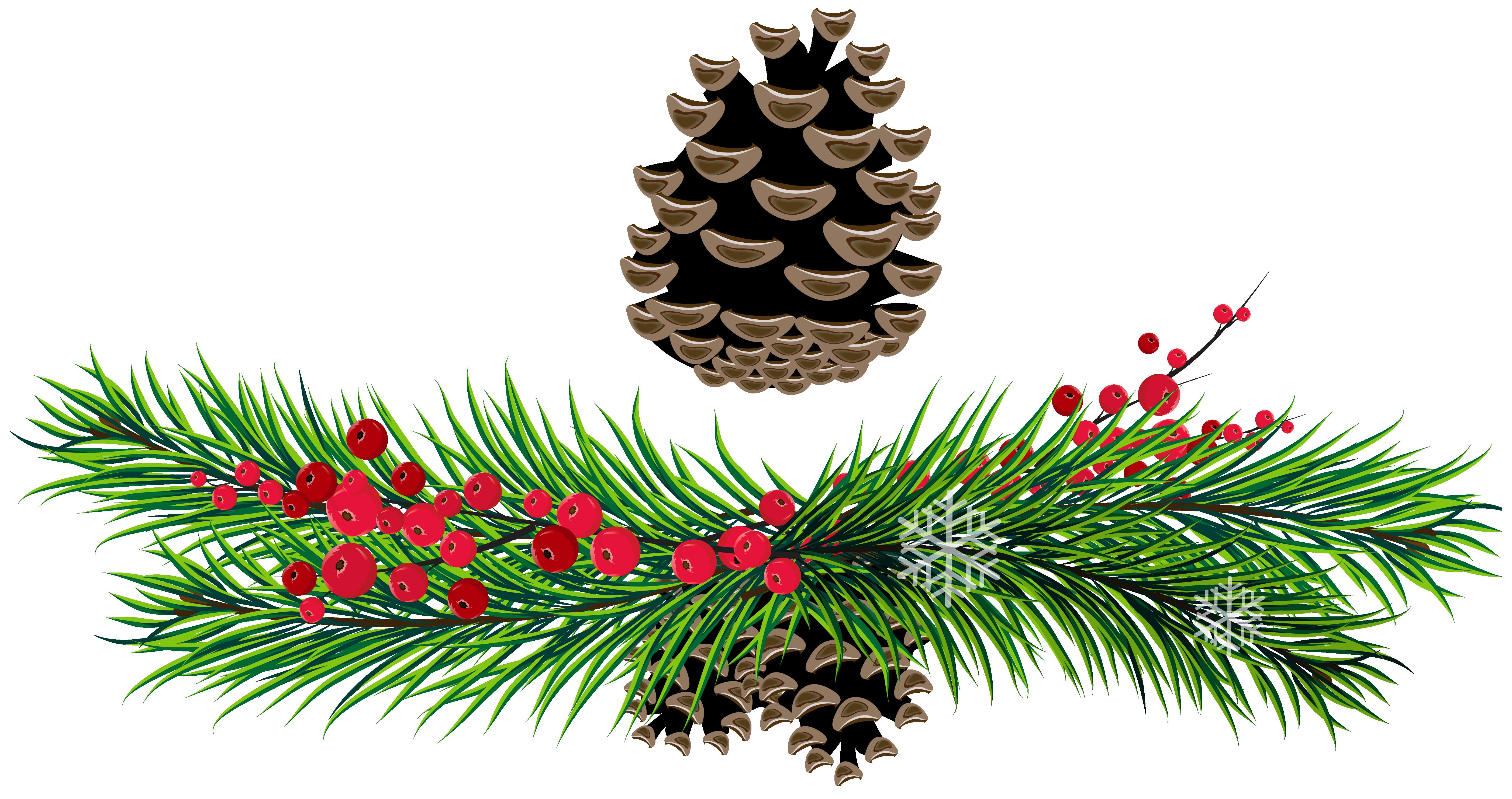christmas pine cone drawing - photo #12