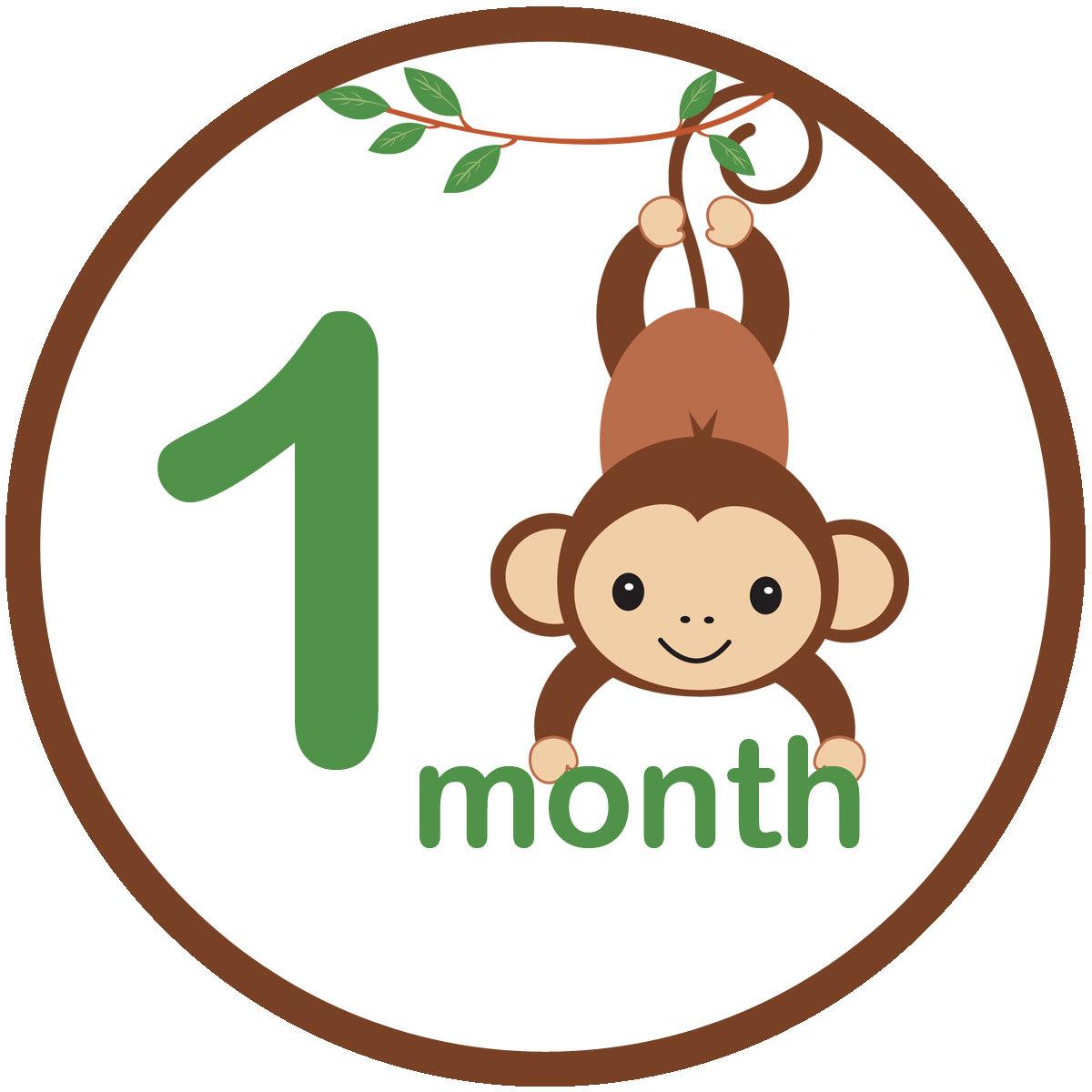 Baby monkey images clip art