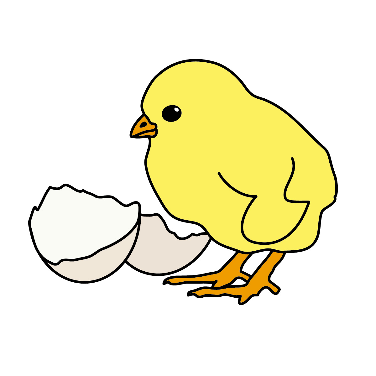Chicks cartoon clipart image #22314