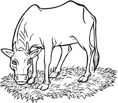 Coloring Pages Of Grass - ClipArt Best