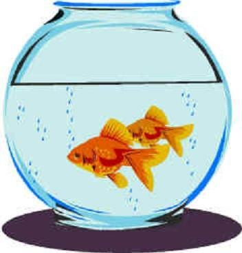 Fishbowl Clipart | Free Download Clip Art | Free Clip Art | on ...