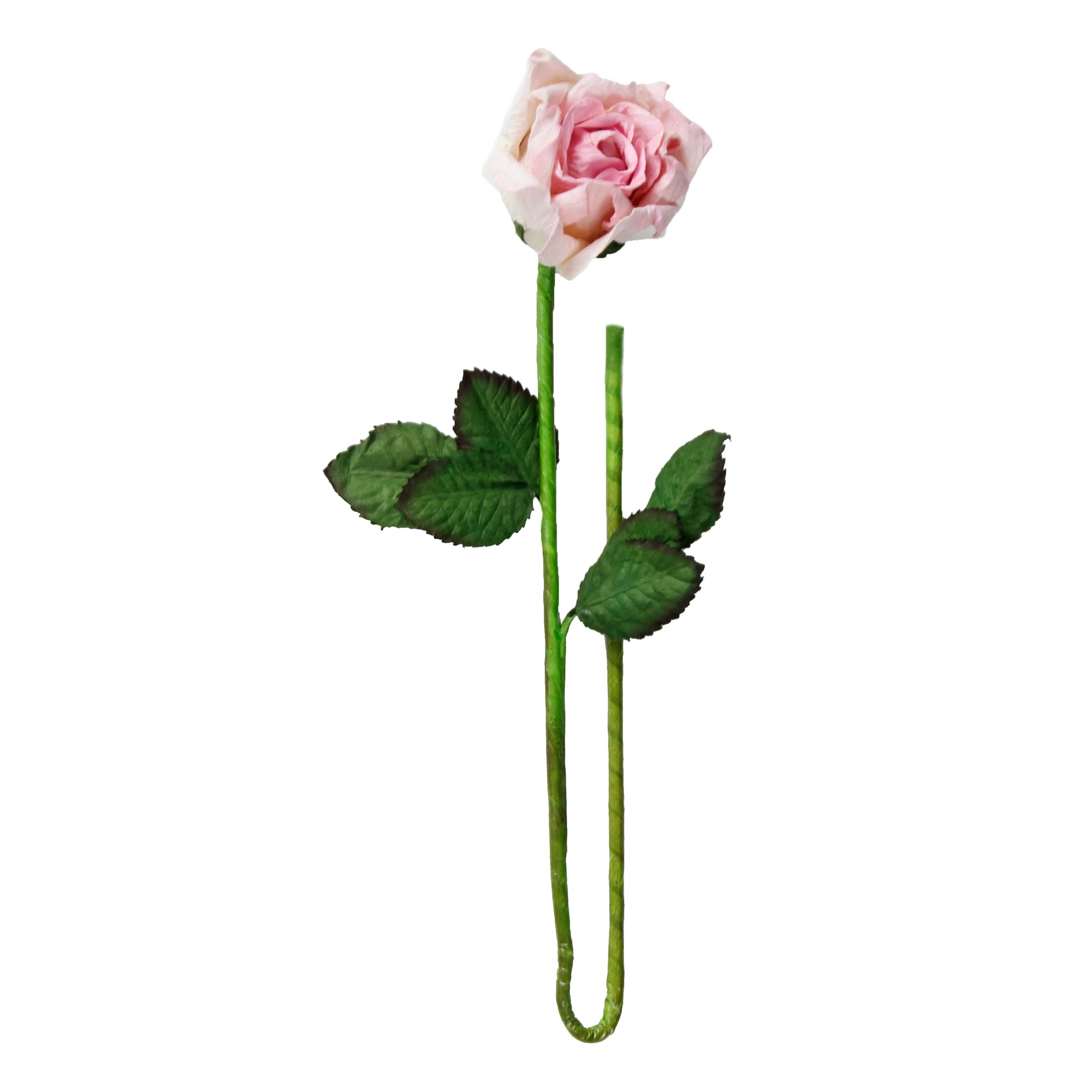 Long Stemmed Rose - ClipArt Best