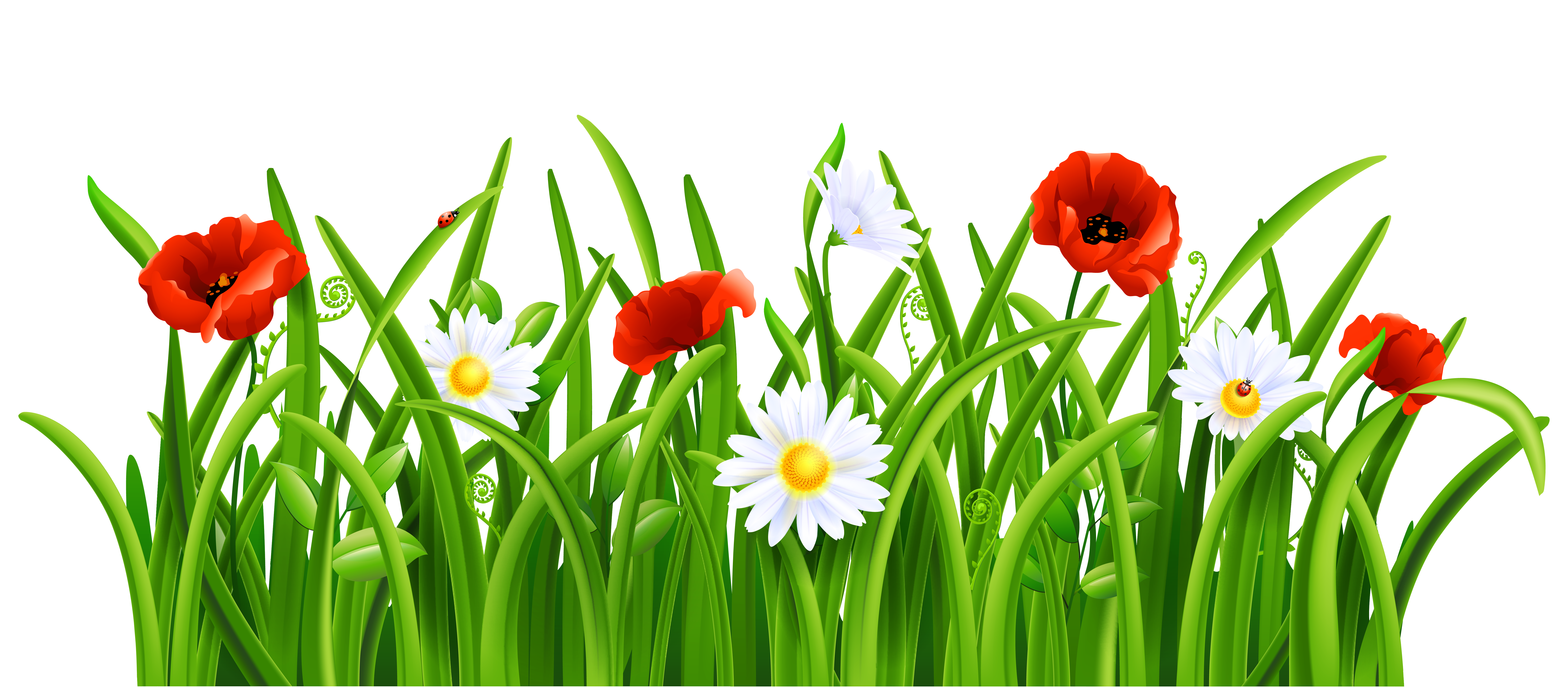 Grass Background Png Grass Png Clipart Picture