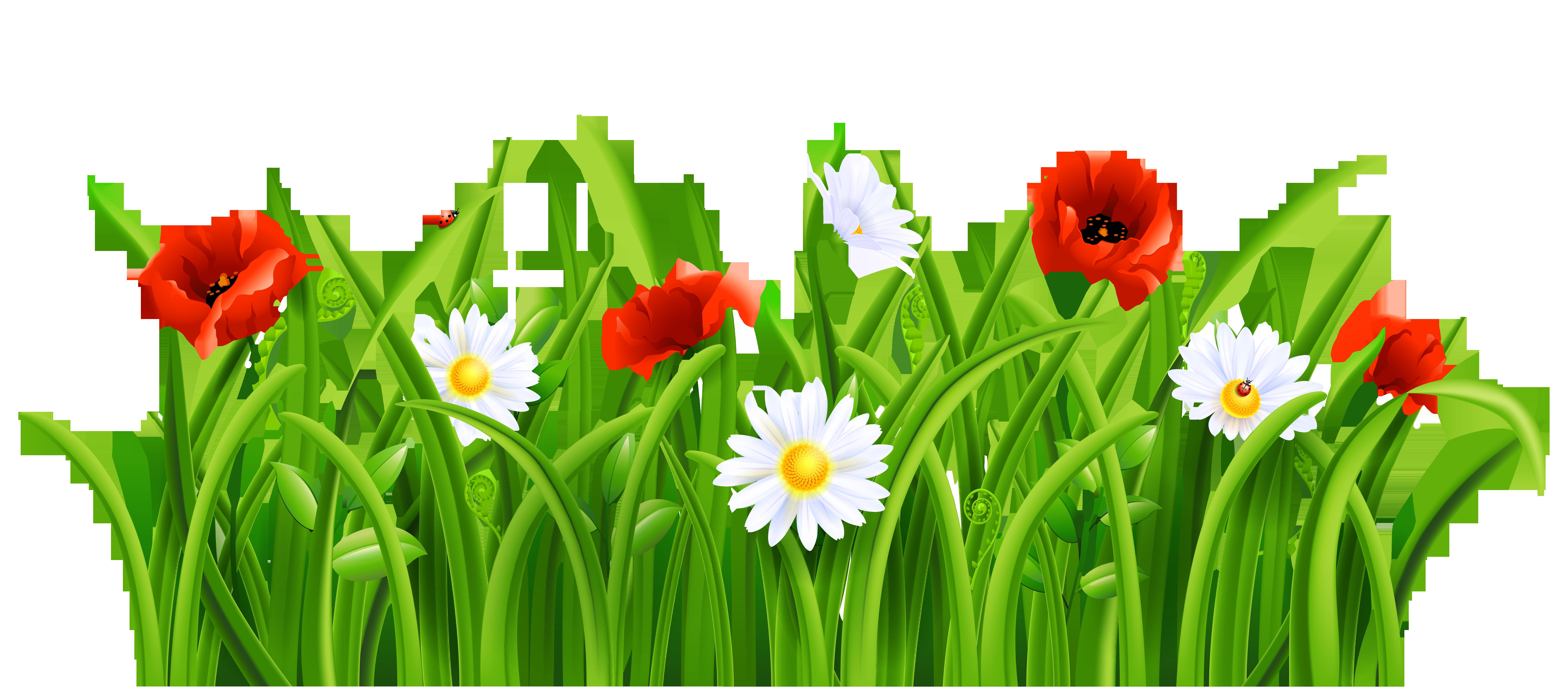 Spring Grass Clip Art