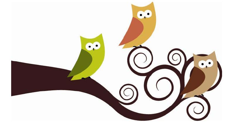 Baby owl cartoons clipart best for A cartoon owl