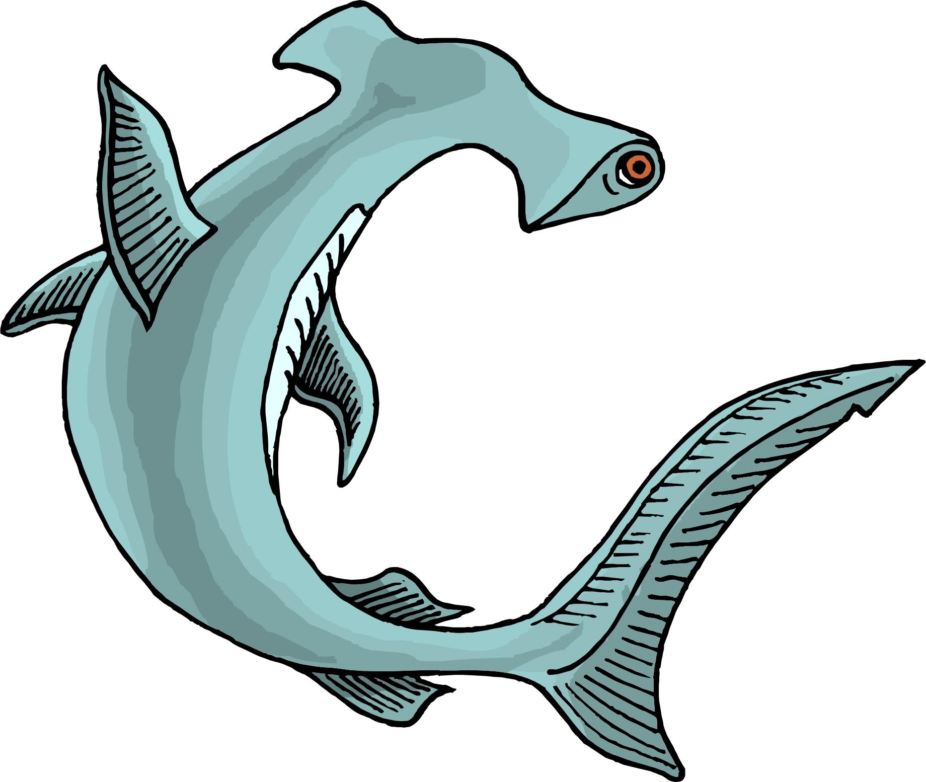 hammer shark cartoon