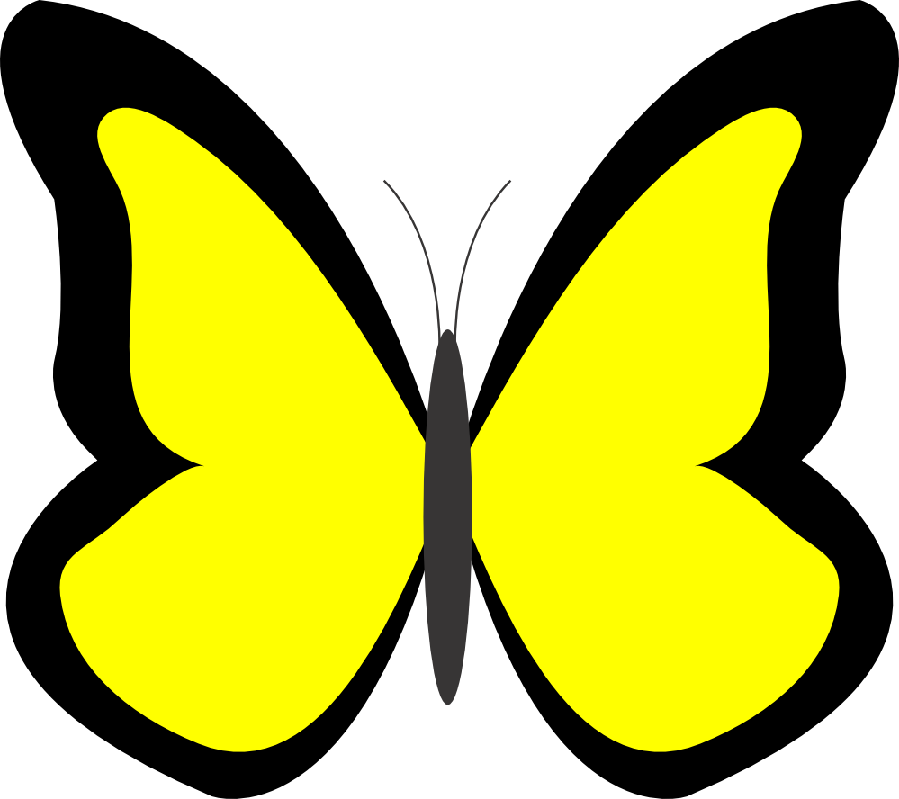 butterfly on yellow color - photo #34