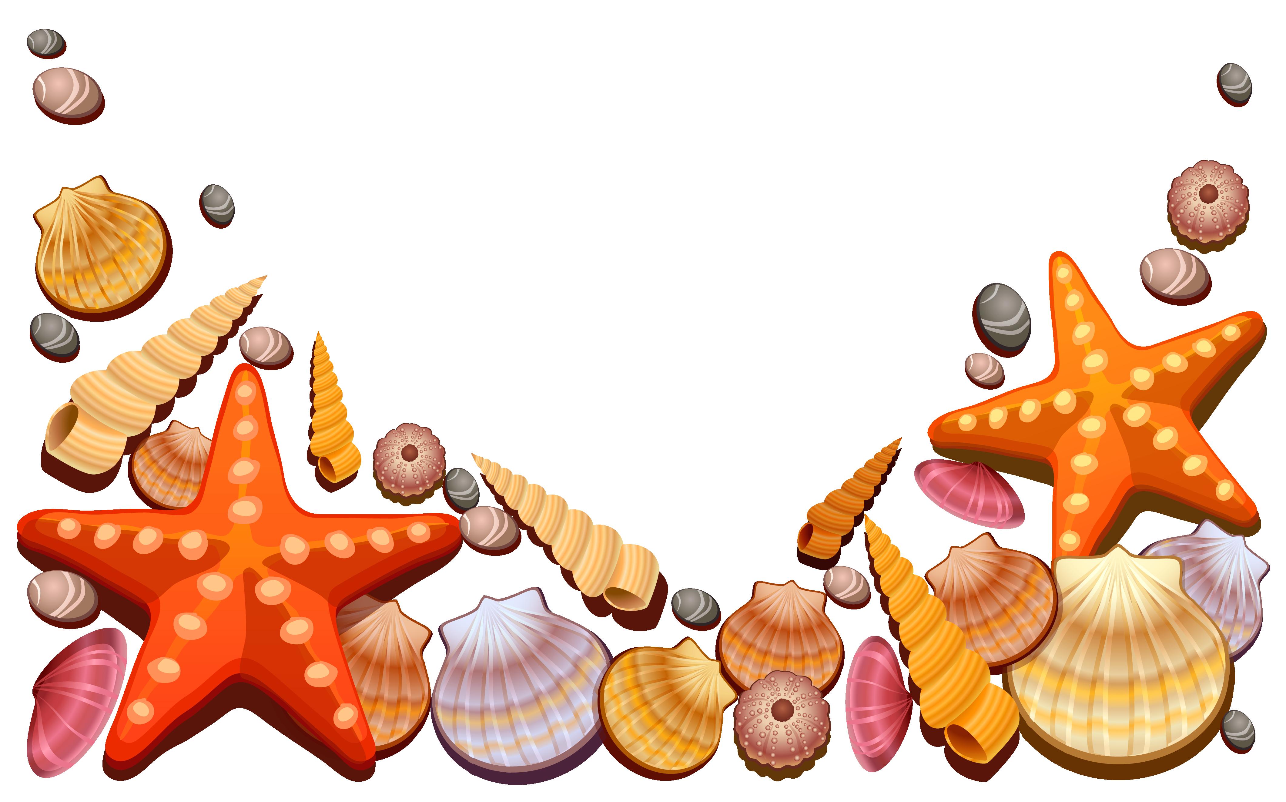 Free Clip Art Sea Shells - ClipArt Best
