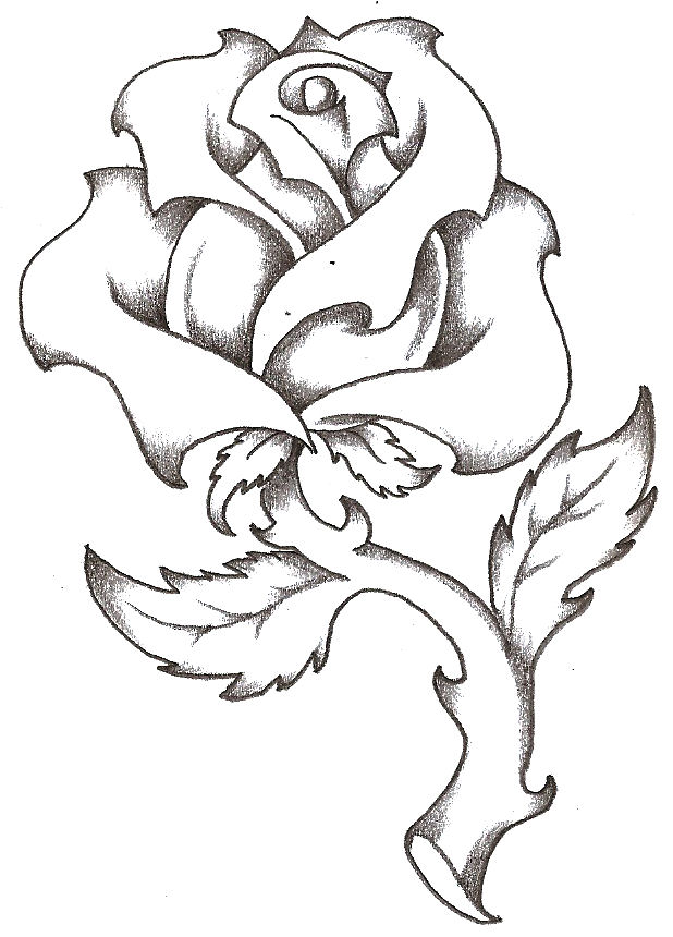 T drawing rose clipart best for Cool rose drawings
