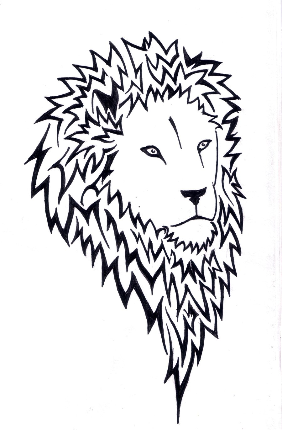 Line Art Lion : Line drawing lion clipart best