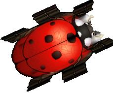 Beetle Clipart - ClipArt Best
