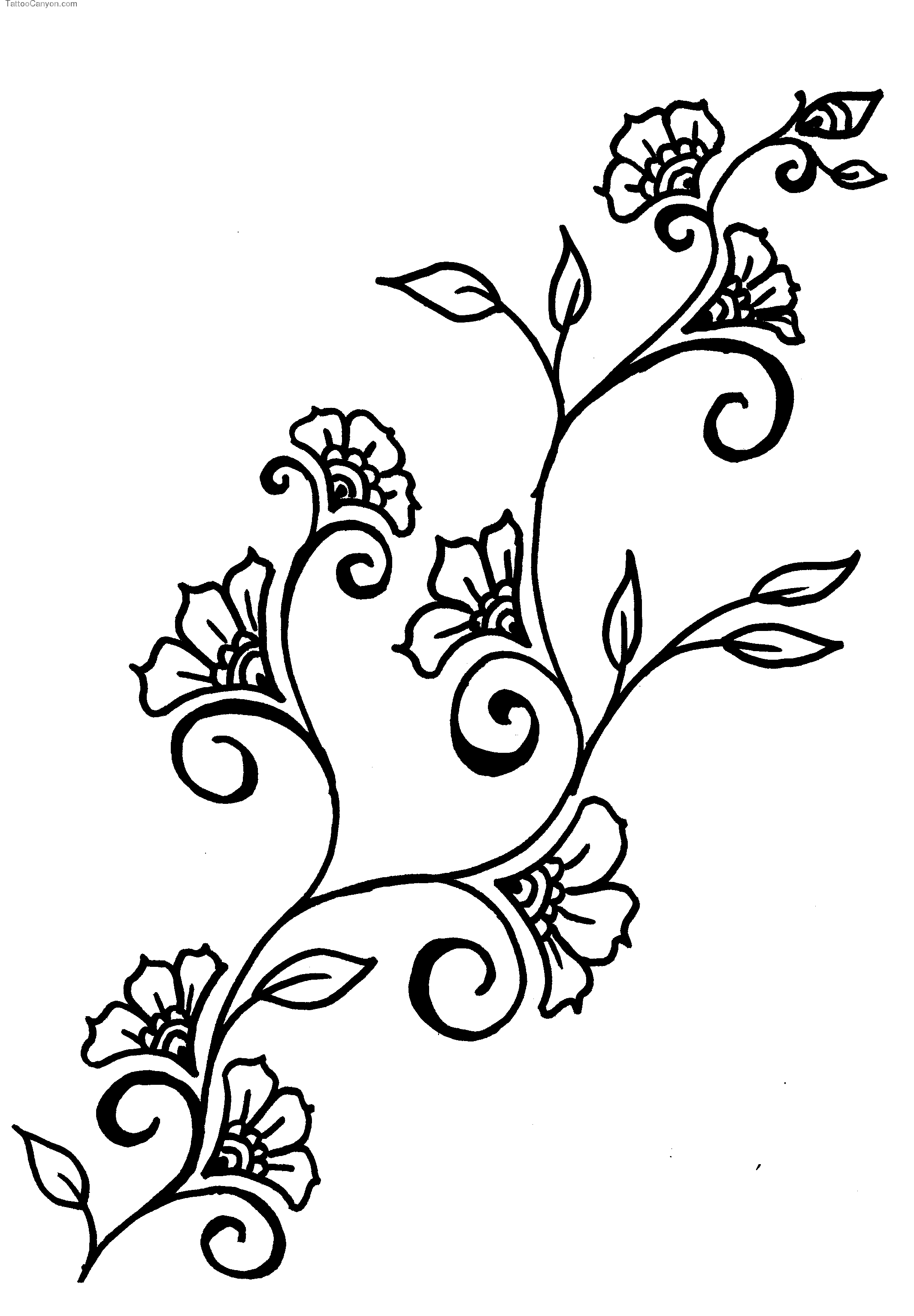 Flower Vine Line Drawing : Vines flowers design drawings clipart best