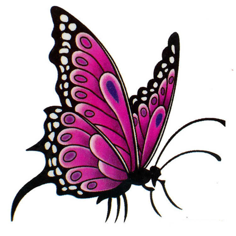butterfly tattoo designs clipart best. Black Bedroom Furniture Sets. Home Design Ideas