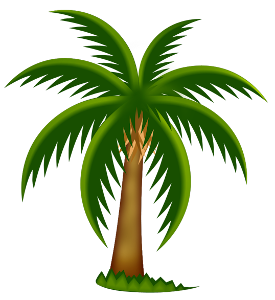 coconut tree png clipart best palm tree clip art free images palm tree clip art free printables