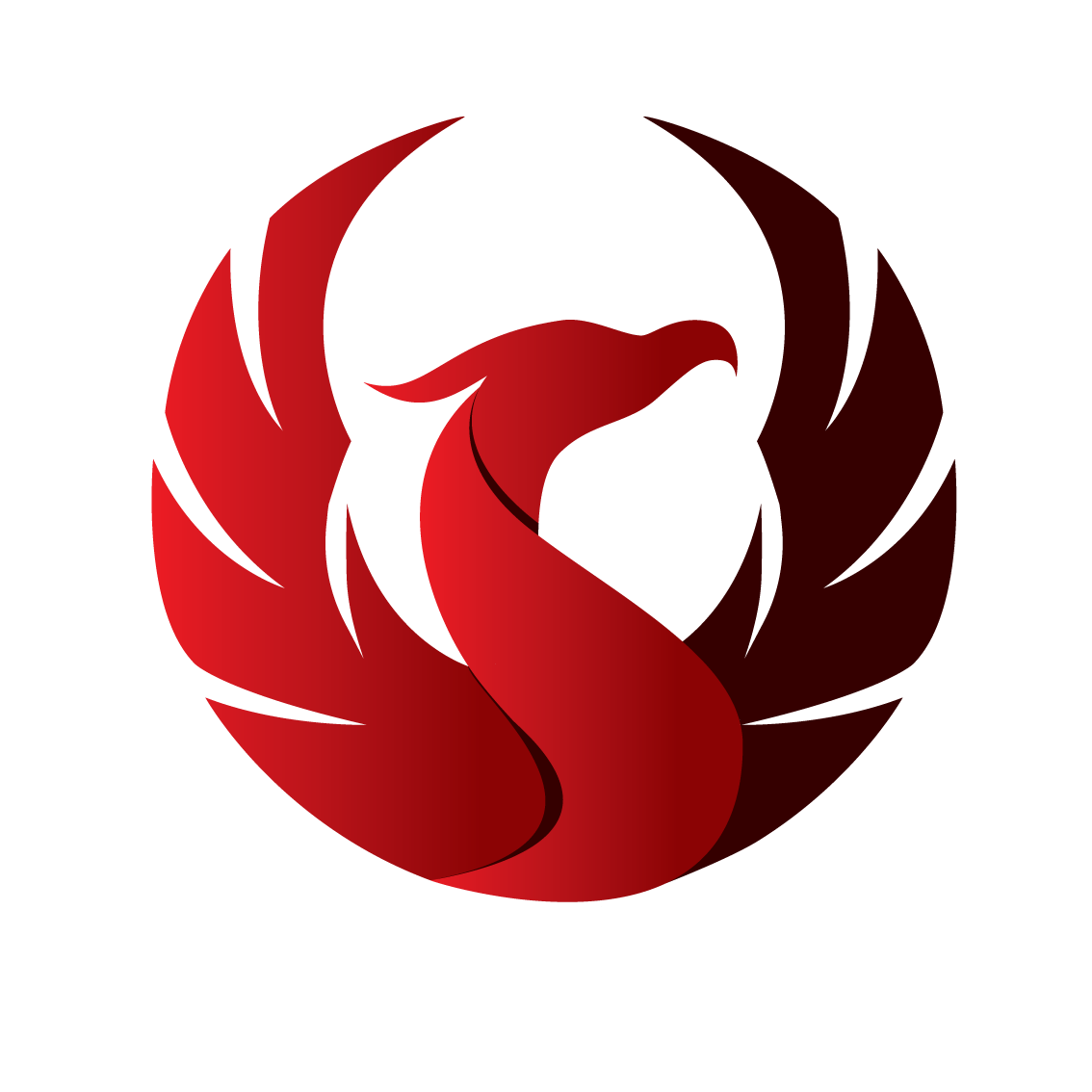 Google, Search and Phoenix