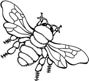 coloring pages locust - photo#21