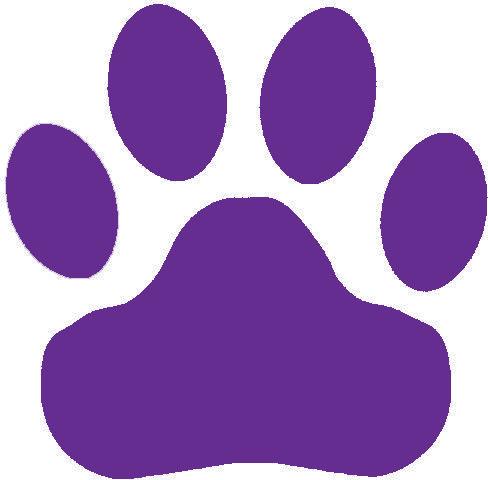 Cat S Paw Transparent