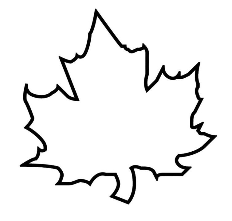 autumn leaf outline clipart best