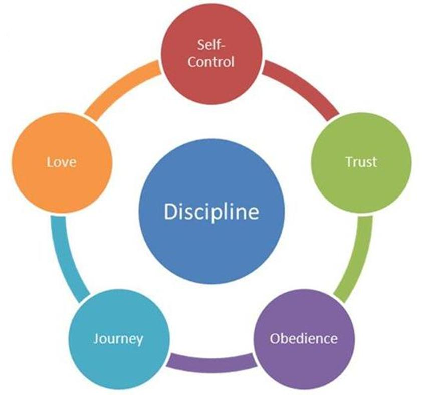essay on discipline in daily life